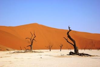 deadvly, namibia, desert